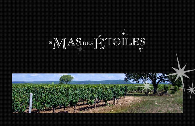 Dégustation de vin du domaine Mas des Etoiles