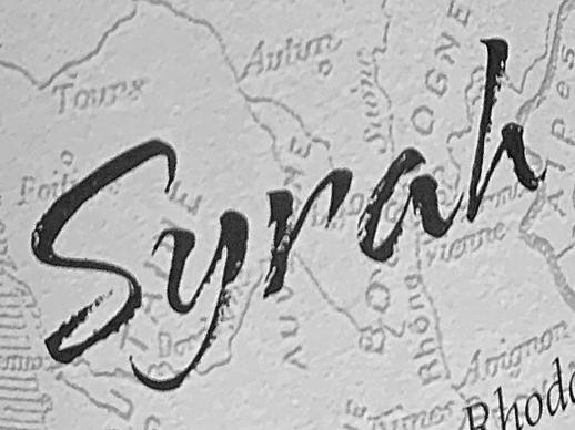 Sélection de vin rouge Syrah, cépage syrah